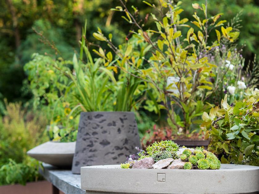 Gartenträume für Familien_Betongefäß