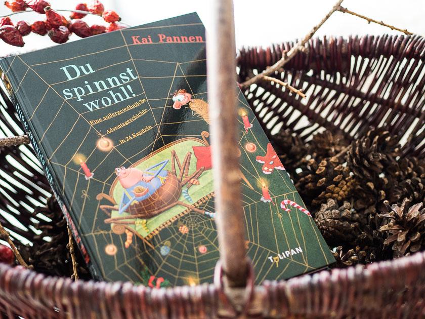 Adventkalender Füllung für Kinder_Buch Du spinnst wohl