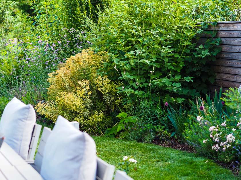 Familiengarten für Faule_Rasenkante