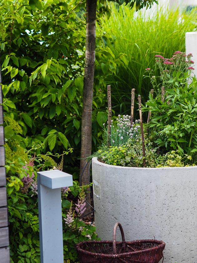 Familiengarten für Faule_Kräuterbeet