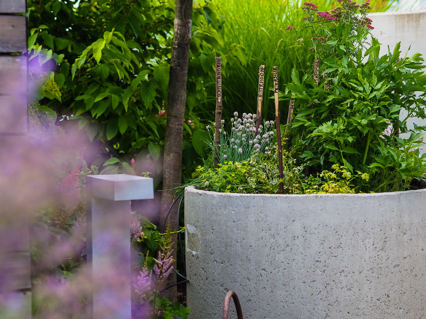 Familiengarten für Faule_Kräuterbeete