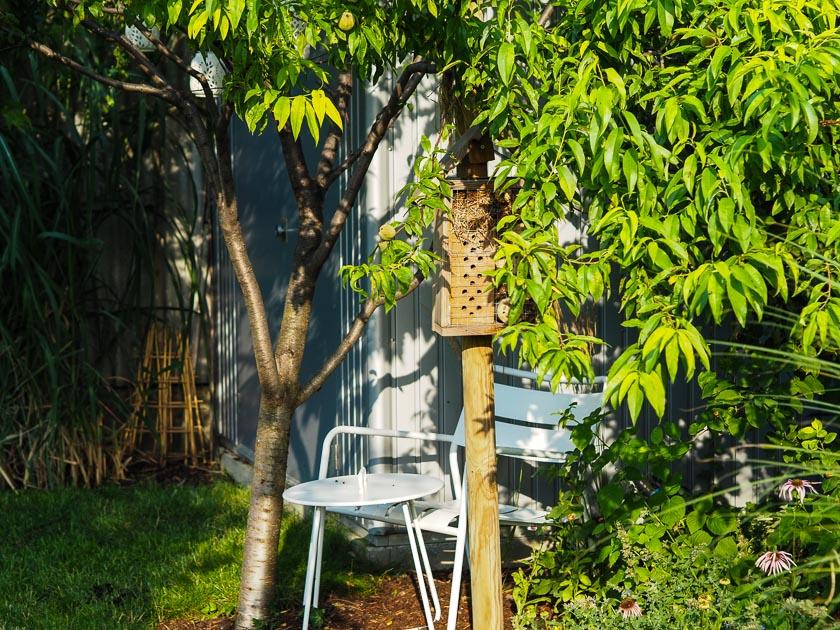 "Familiengarten für ""Faule""_Garten Sitzplätze"