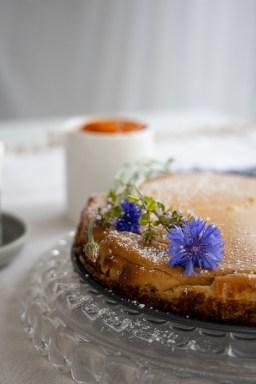 Cheesecake Marillenröster Ziegenfrischkäse backen