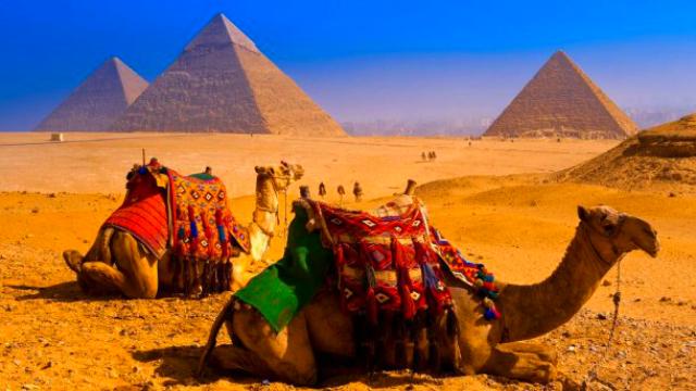 Египет из Ростова открыт!
