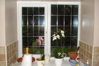 white window looking out to garden