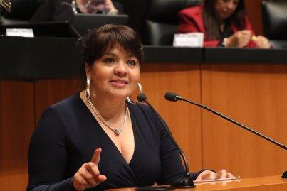 Exhorta senadora Nestora Salgado a proteger al jaguar en Guerrero - Grupo  Parlamentario Morena - Senado de la República
