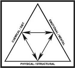 En nuestra Clínica dental de Córdoba valoramos todas las influencias del triángulo de la Salud