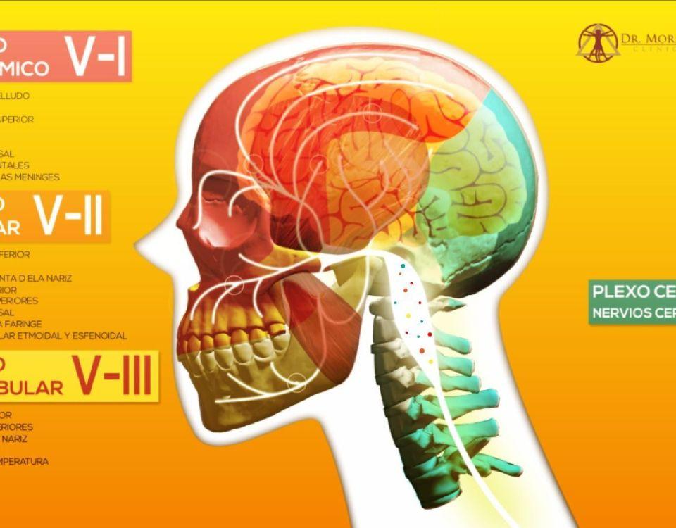 Imagen del Storyline sobre la Patología Traumática de la Dinámica Mandibular (PTDM)