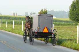 amish buggy rear