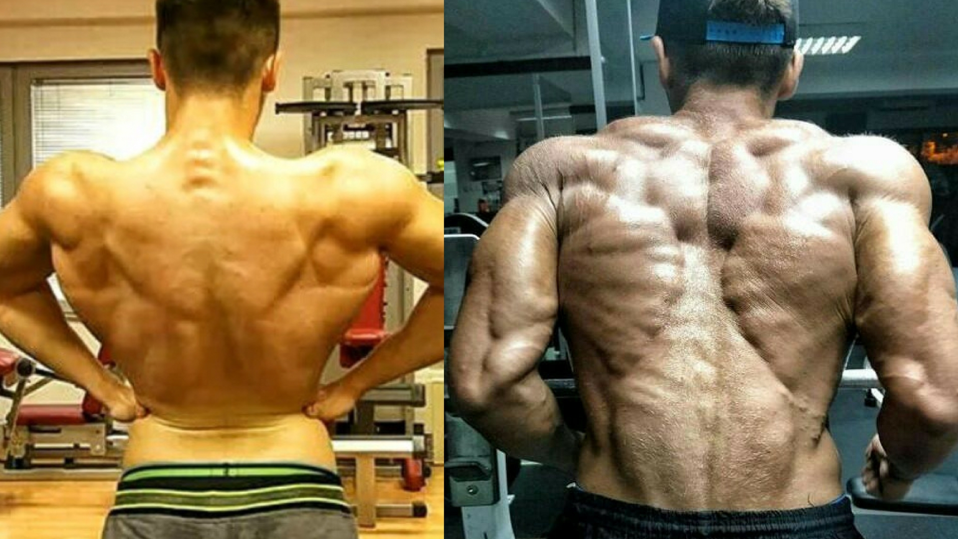 CRAZY SARMS CYCLE TRANSFORMATION - Before And After Pictures