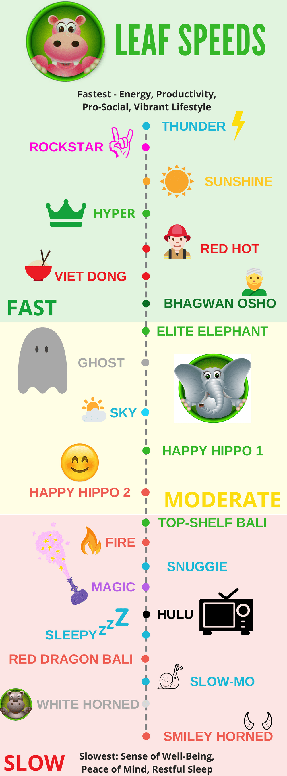 Depiction of the benefits of each Happy Hippo Kratom Strain
