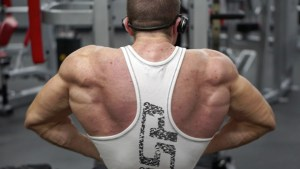 Lat Spread Bodybuilding Pose