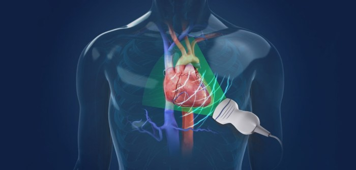 How To Maintain Cardiovascular Health While Bodybuilding
