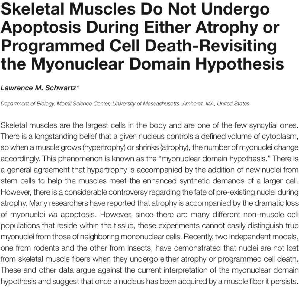 Myonuclear Domain Hypothesis