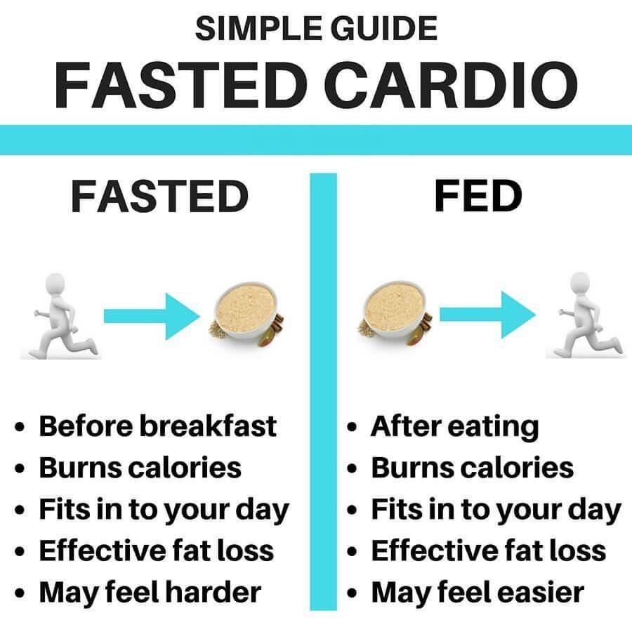 fasted cardio vs fed cardio simple guide
