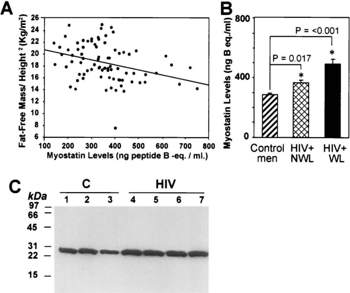 Myostatin Levels Elevated In HIV Positive Individuals