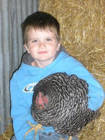 Zech and chicken
