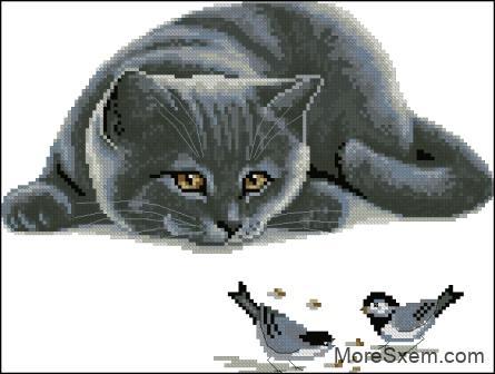 Кот притаился