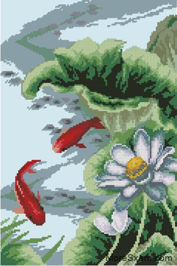 ribki-i