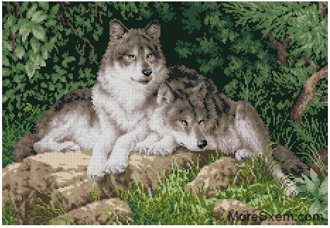 Лесные хищники