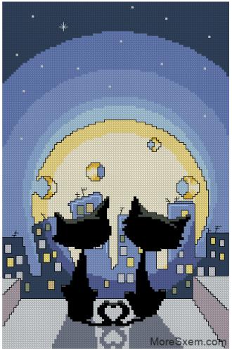 Котики и сырная луна