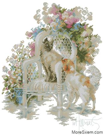 Кошка и собака в саду
