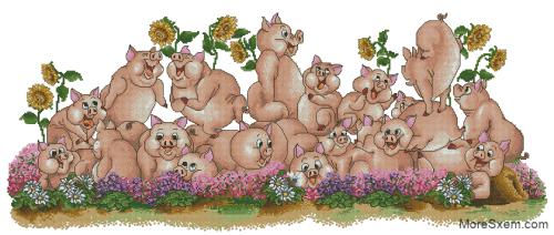 Кругом свиньи