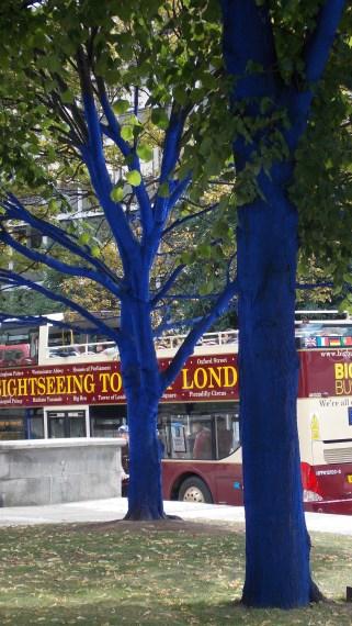 Trees at St Pauls