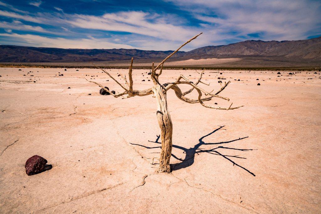 death valley in summer