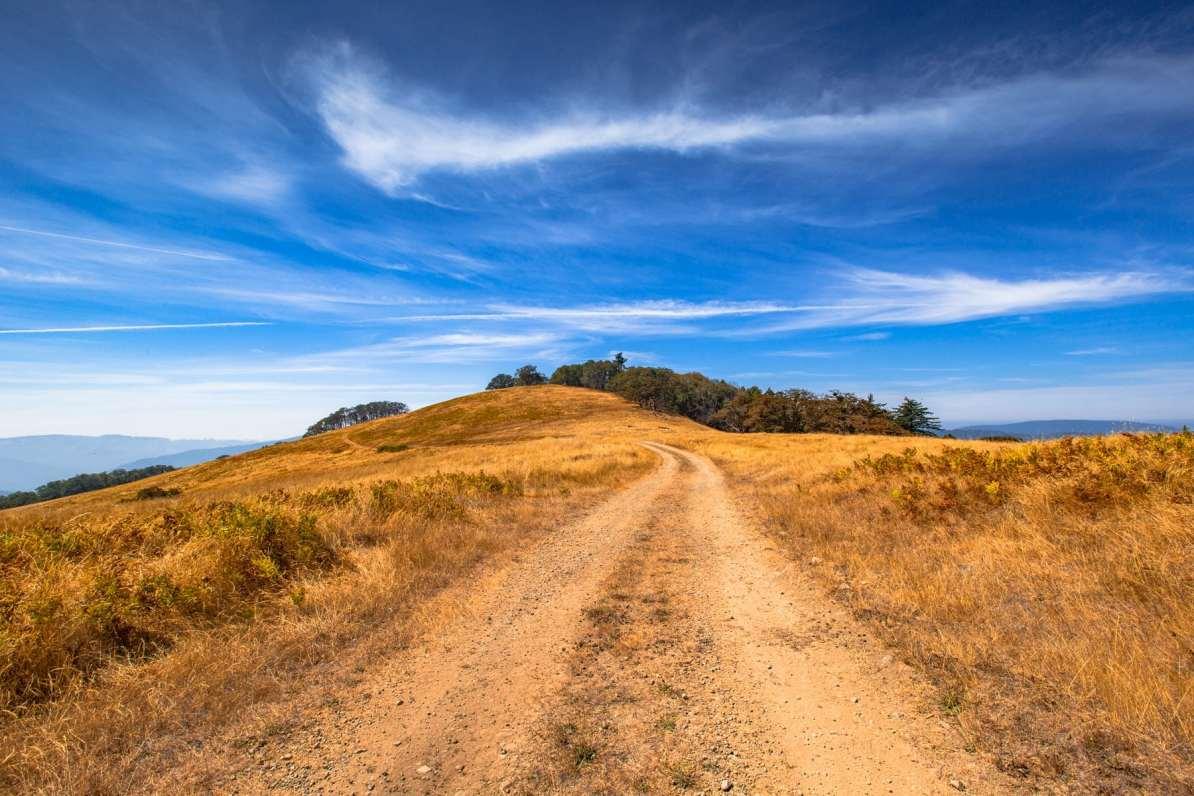 bald hills redwood national park