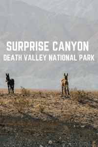 surprise canyon death valley