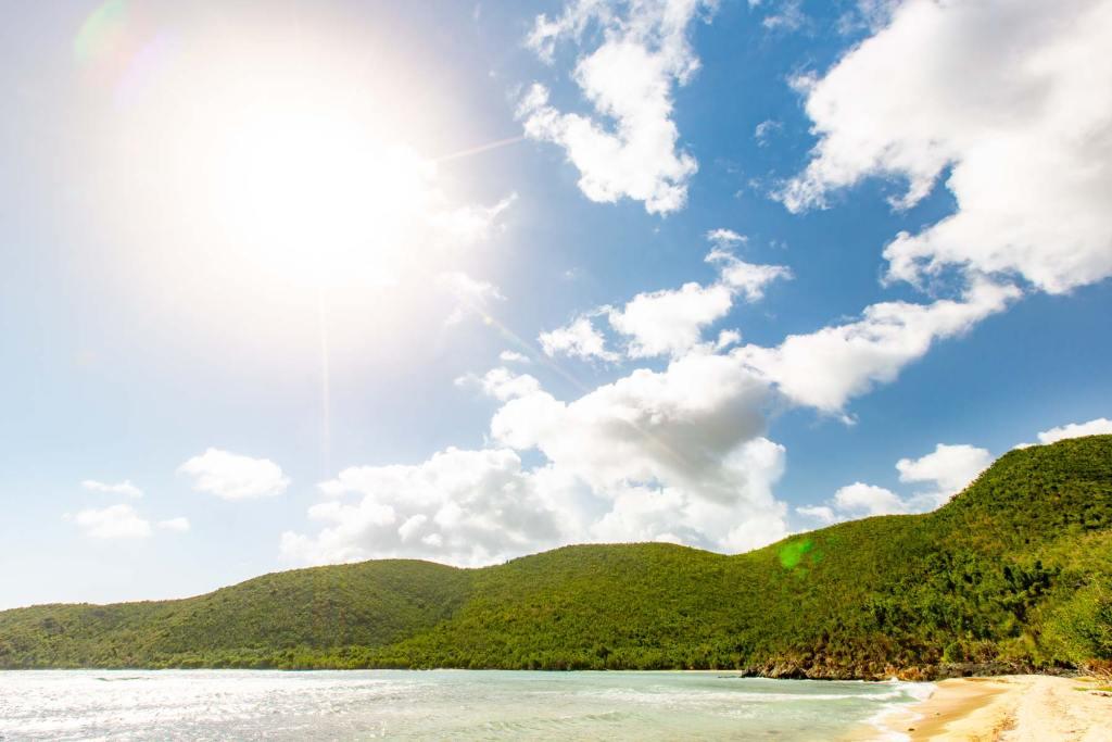 reef bay virgin islands national park st john