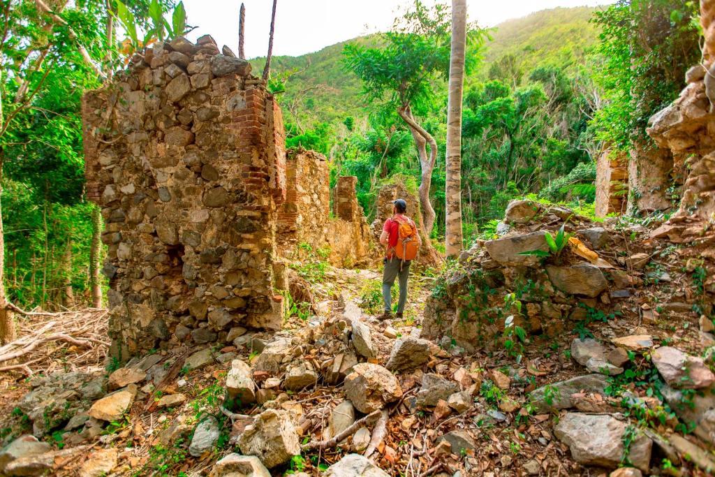 reef bay trail ruins virgin islands national park st john