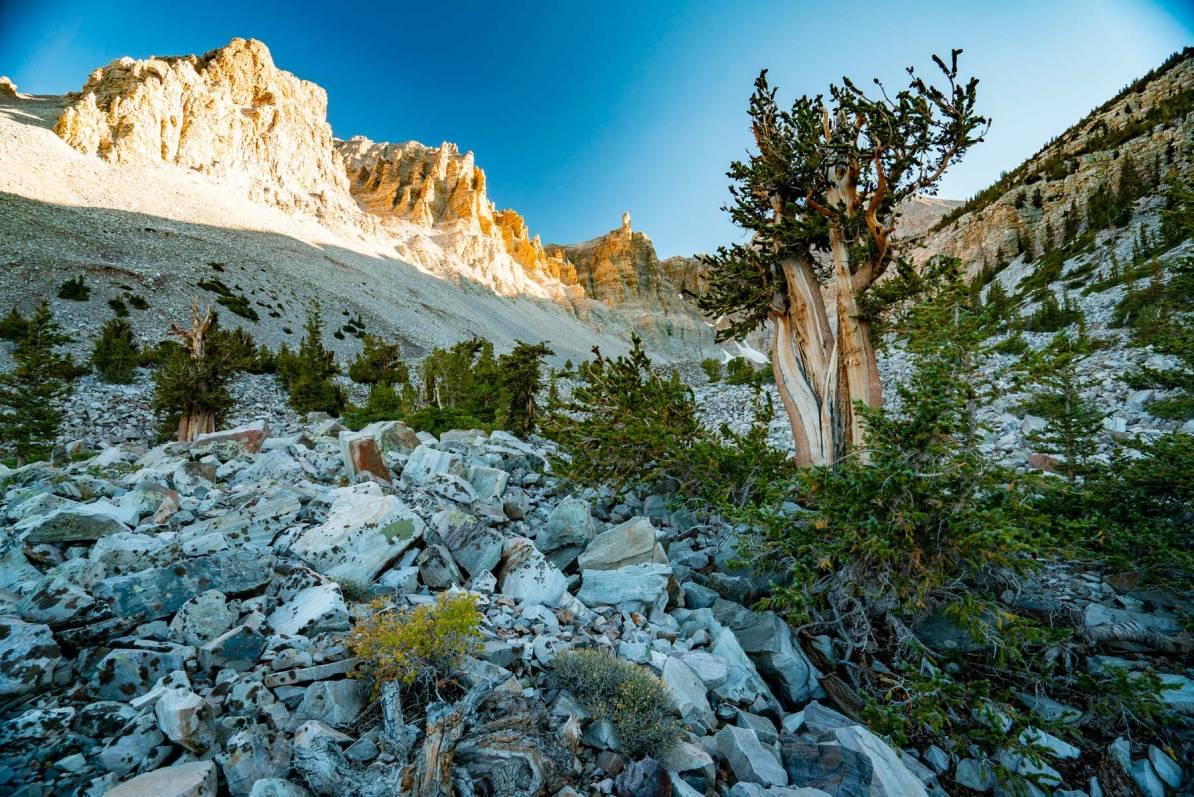 great basin national park nevada – us national parks ranked