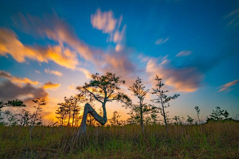 us national parks ranked – everglades national park florida