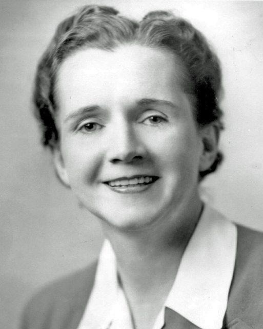 Rachel Carson Gave Birth To The Modern Environmental Movement