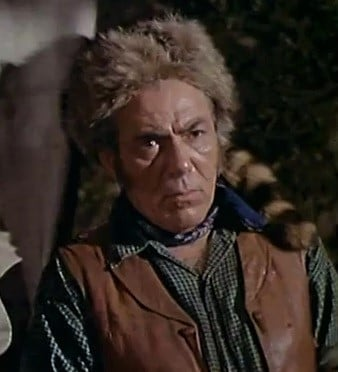 The Coonskin Cap was popularized by the Daniel Boone Show   National Parks In Television Shows