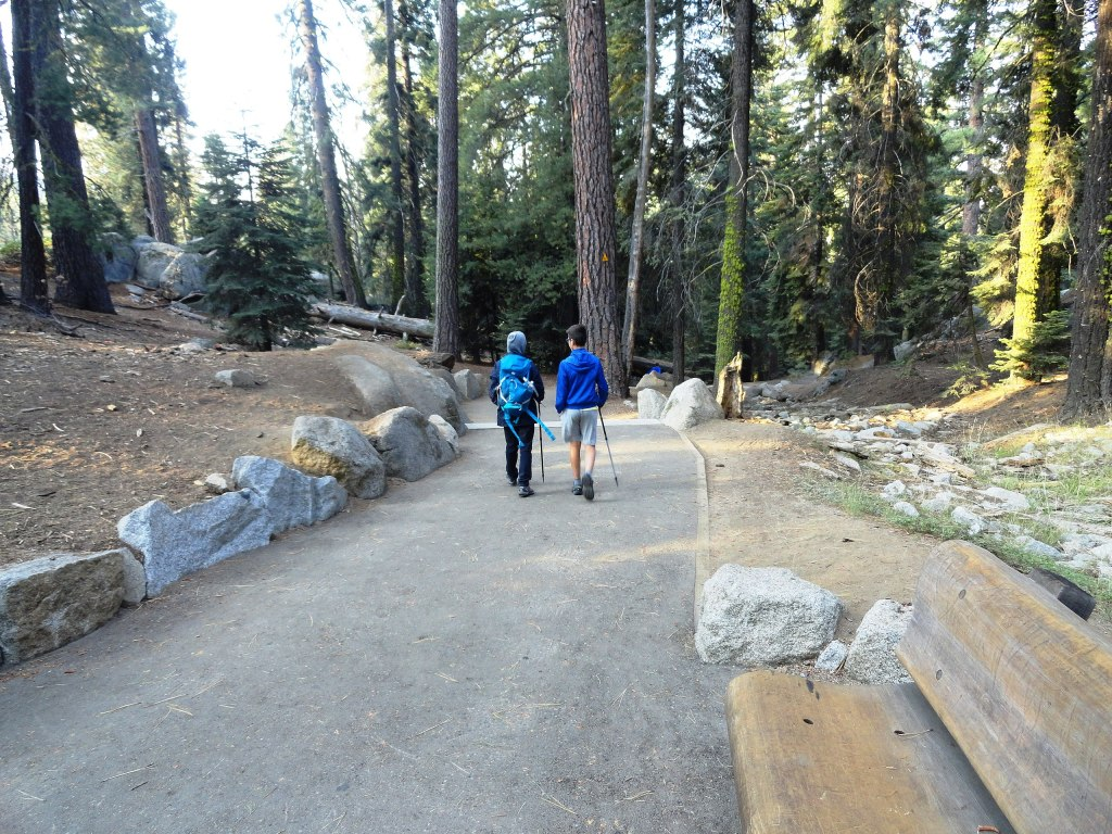 There are some incredible hiking trails in Sequoia and Kings Canyon National Parks | General Sherman Tree