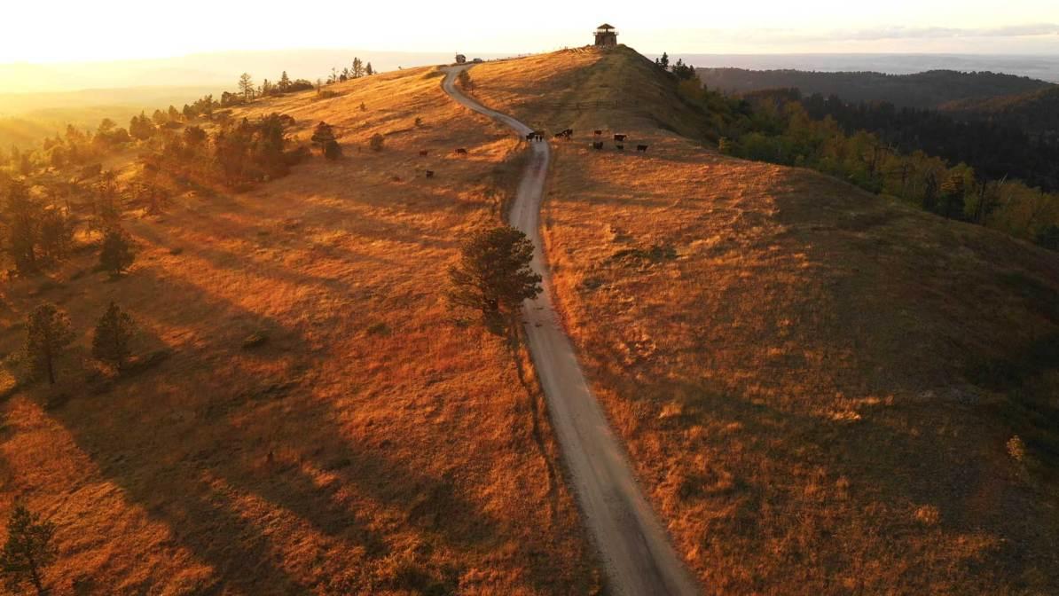 black hills national forest south dakota