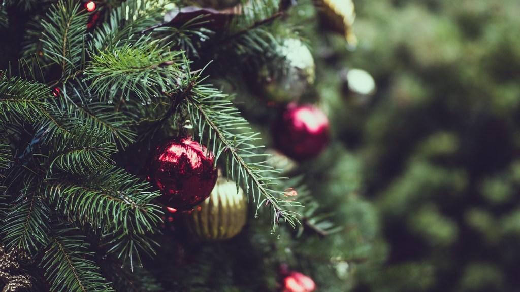 christmas, tree, lights-2595975.jpg