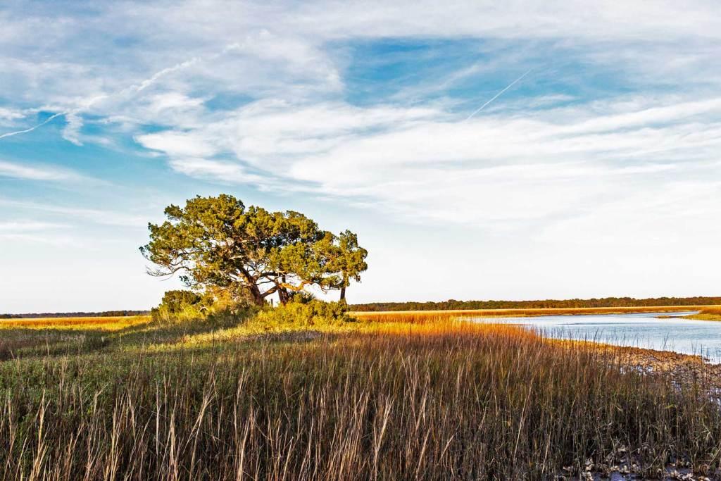Timucuan Ecological & Historic Preserve florida