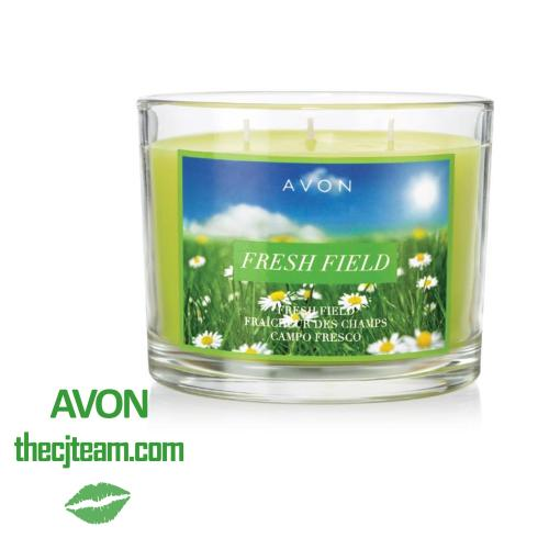 Fresh Field Candle x