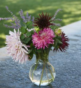 Opposites Attract For a Fall Floral Arrangement: Lemon Balm & Dahlias