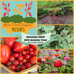 Growing NOW Garden Tour