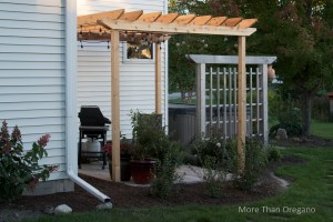 Scaling Back: DIY Space-Saving Patio & Fragrant Garden