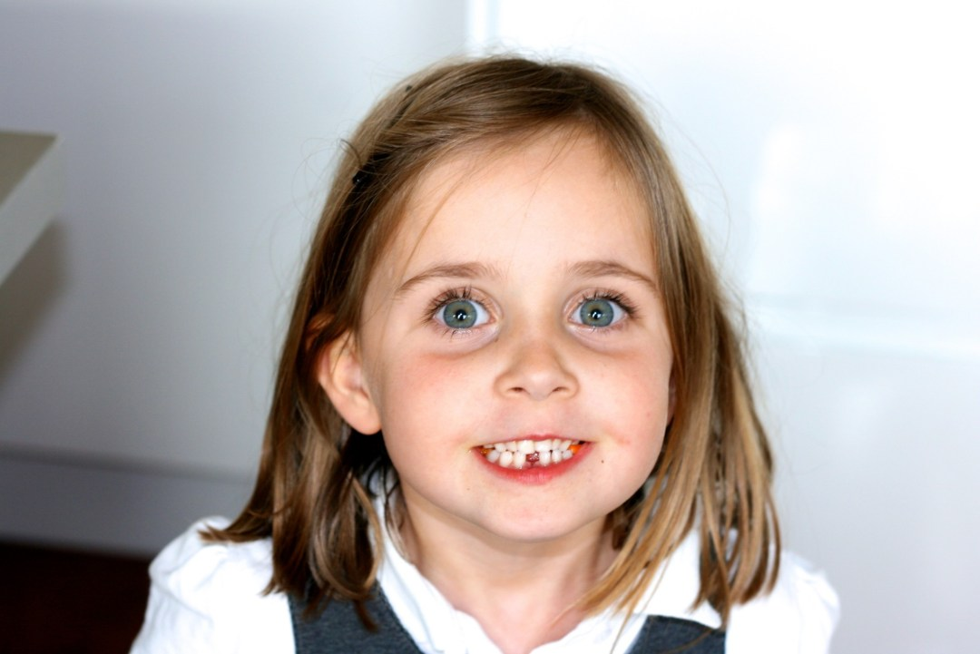 Elfie is 6