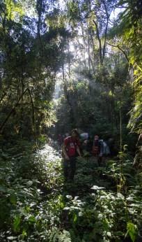 Thomas et l'équipe sur le retour de l'exploration des grottes dans la forêt de Ranomafana