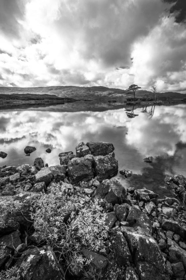 Au bord du Loch Assynt