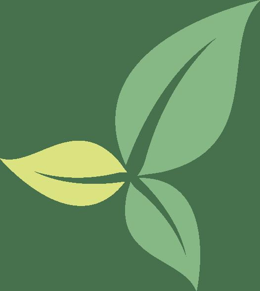 Feuilles qui représentent l'écologie