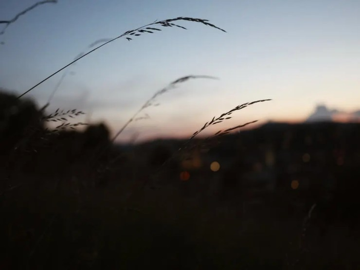 Walk by night